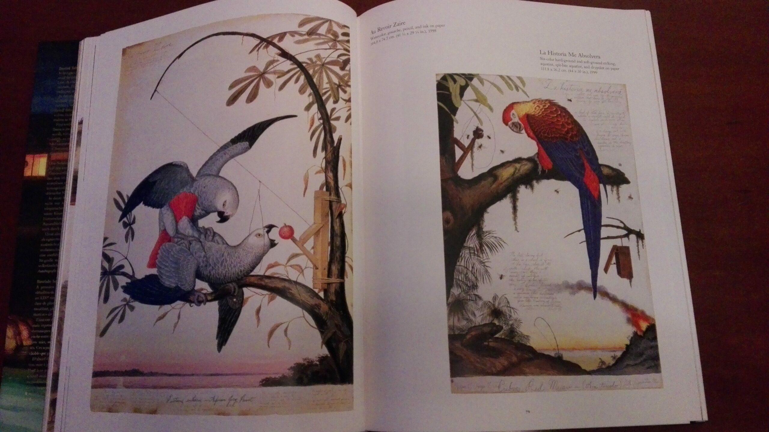 Bilde fra en dobbeltside i en bok. Bildet viser to malerier, begge av fugler.